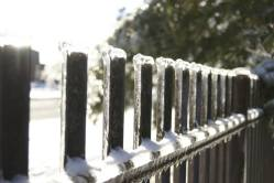 The sun shines through the ice of this frozen fence